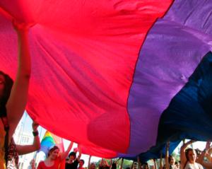 Orgullo Estatal 2016, Año de la Visibilidad Bisexual en la Diversidad