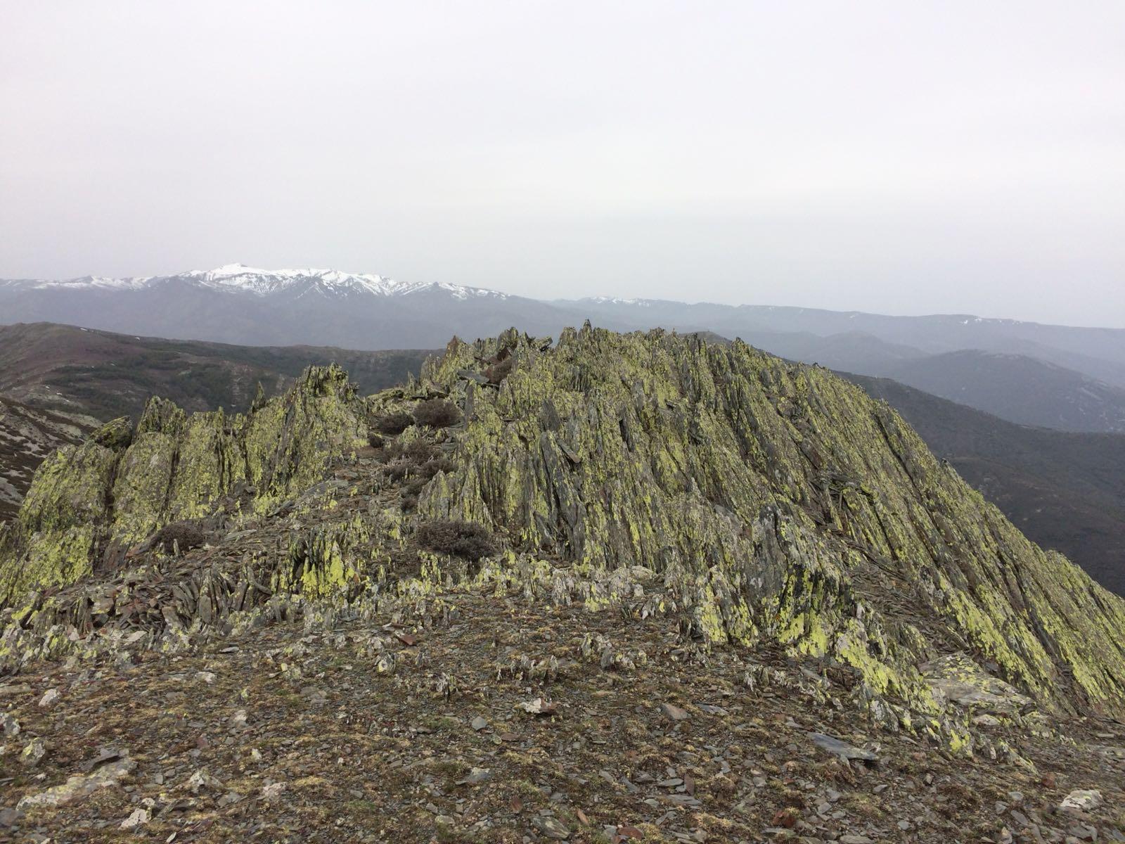 Pico La Tornera